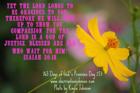 day253 kjp313 jamaica2 728