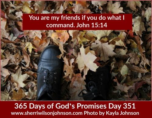 day351 kjp272DSC_0589-2 copy-2